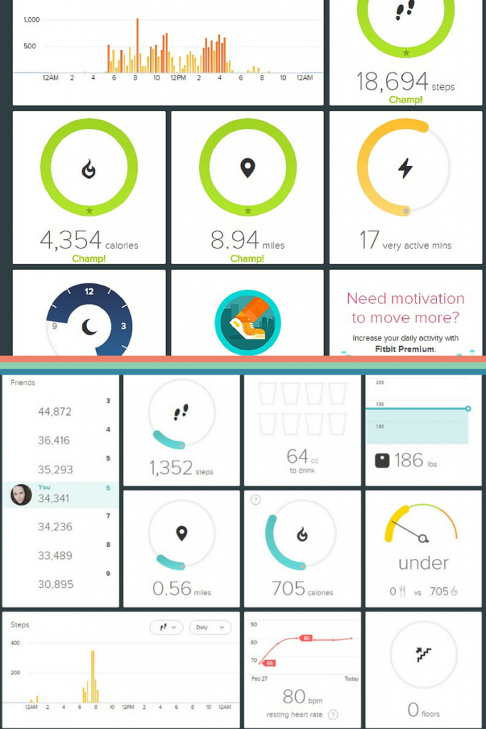 fitbit flex dashboard, fitbit flex vs fitbit charge hr, fitbit review