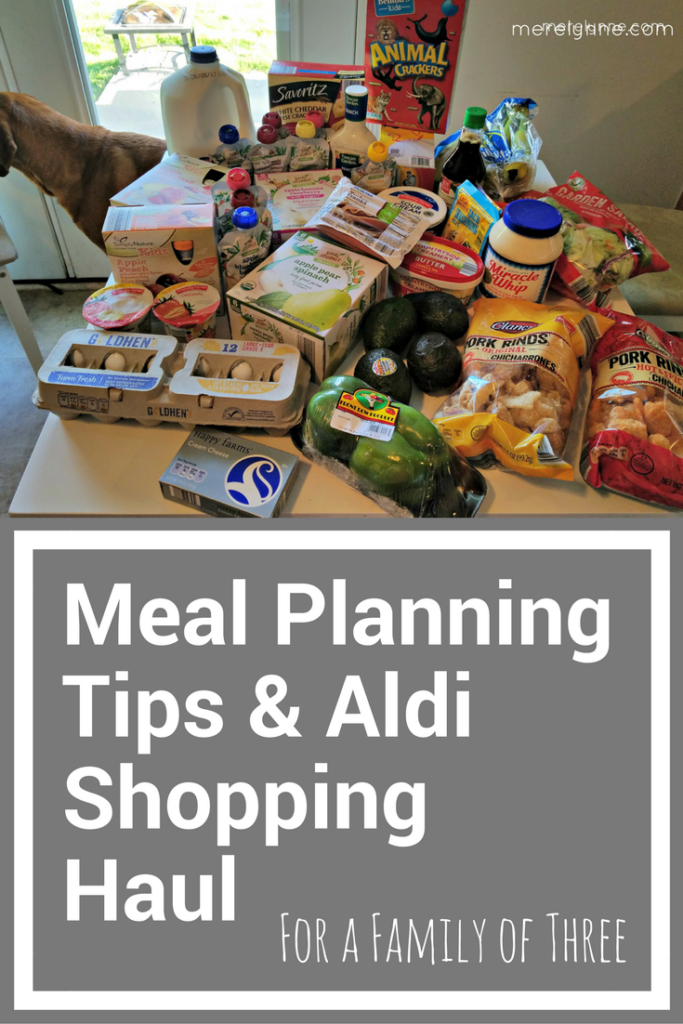 aldi shopping haul, shopping on a budget, grocery haul, family grocery shopping, budget tips, how to shop on a budget