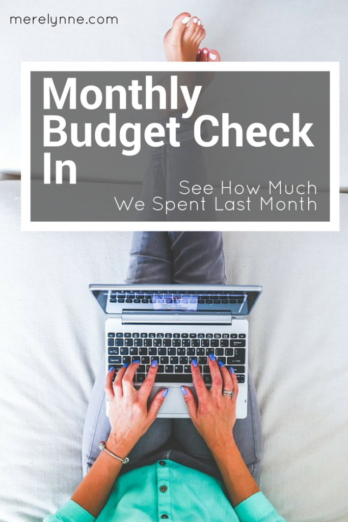 december budget check in, budget check in, how much do we spend, how much to spend, meredith rines, merelynne